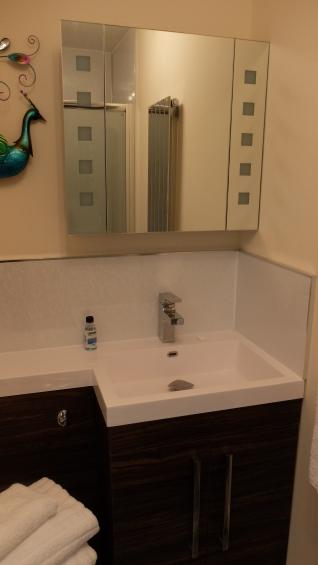 Nessie Room en suite sink and toilet