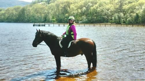 HORSE LOCH NESS
